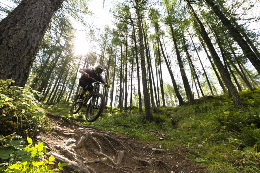 Downhill bike nel bosco